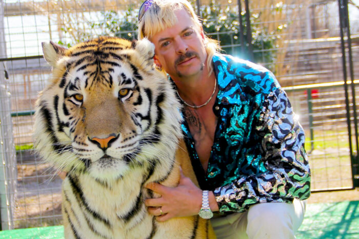 Nic Cage As Joe Exotic Too Good To Be True